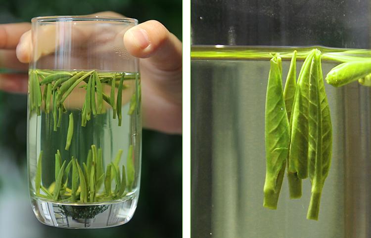 绿茶的3大投法,上面介绍的冲泡技巧是适用于所有绿茶品类的,但其实不同的绿茶,有不同的投茶方法: 上投法,就是先注满水,再投茶。适合茶叶毫毛多、茶形松散的绿茶,比如碧螺春,这样就不会破坏了茶形。 下投法,就是先投茶,再注满水。适合茶形较大、芽叶较大的绿茶,比如黄山毛峰,这样可以更好的泡出茶味。 中投法,就是先注入三分之一的水,然后投茶,再注满水。适合茶形紧结的绿茶,比如龙井,通过软化和浸泡茶叶,加快茶叶内质的析出,使得茶叶能迅速出汤。 茶七网上架的2018明前绿茶,可以通过以下图片点击购买哦!然后用上今天